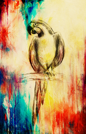 pencil deawing parrot on old paper, vintage paper and old structure Stock Photo