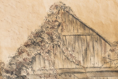 grapevine: Cottage hand drawing and wild grapevine. Draving on old paper