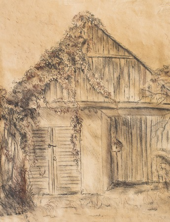 abandoned house: Cottage hand drawing and wild grapevine. Draving on old paper