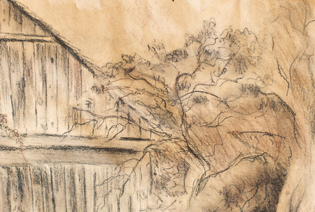 dilapidated: Cottage hand drawing and wild grapevine. Draving on old paper