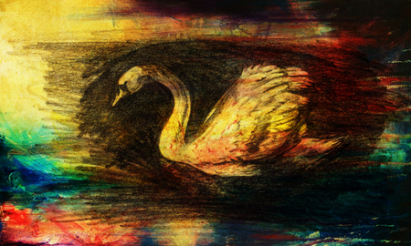 pencil drawing swan on old paper background and Color Abstract background Stock Photo