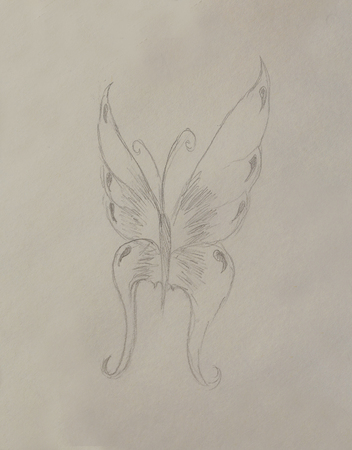 illustration of a butterfly, pencil drawing on paper Stock Illustration - 55750730