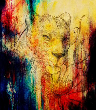 pollinate: Lioness with flower, pencil drawing. Color effect and Computer collage
