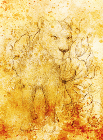 Lioness with flower, pencil drawing on paper. Color effect and Computer collage