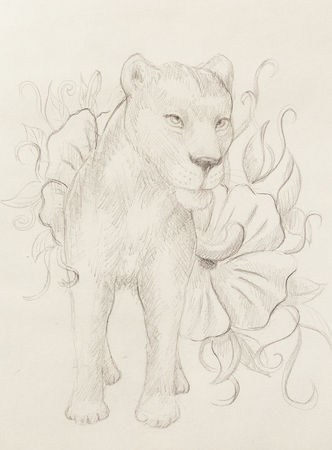 Lioness with flower, pencil drawing on paper