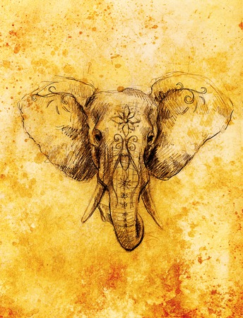 Elephant with floral ornament, pencil drawing on paper. Sepia color