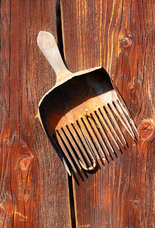 assemblage: antique old style retro object assemblage on a wooden wall. rustic stile. Rake in blueberries