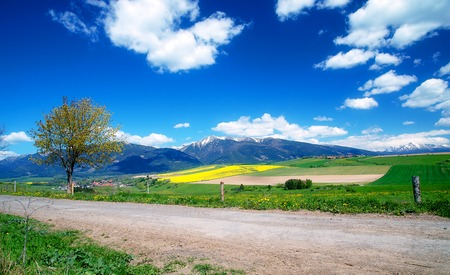 snow fields: Beautiful landscape, road and green and yellow meadow with field and snow mountain and village