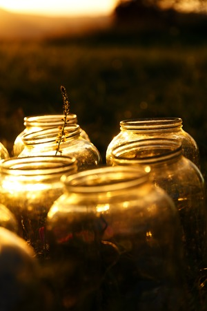 Set of empty bottling jars at sunset with miraculous evening light Stock Photo