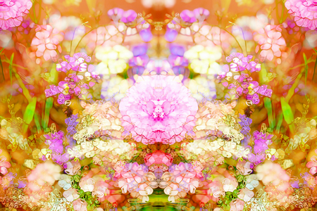 computer art: Abstract colorful design with flower. Computer art Stock Photo