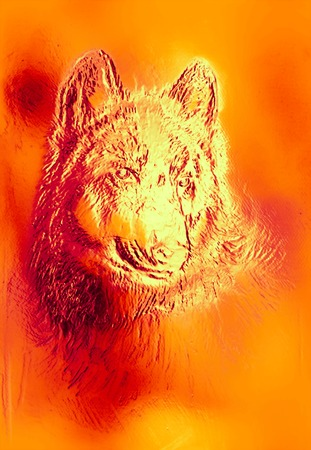 royal safari: magical space wolf, multicolor computer graphic collage. Metal and fire effect Stock Photo
