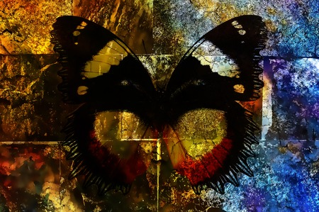 butterfly on crackled wall texture, color crackle background, computer graphic.