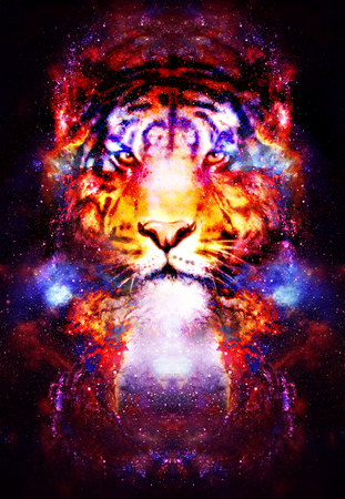 magical space tiger, multicolor computer graphic collage. Space fire.