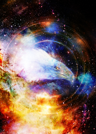 Eagle in cosmic space and light circle.