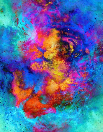 magical space tiger and eagle collage and ornament, multicolor computer graphic collage.