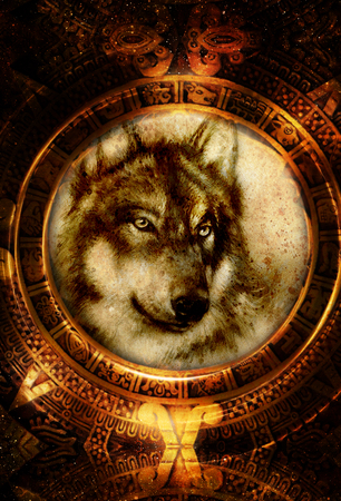 Ancient Mayan Calendar and wolf head, abstract color Background, computer collage. Stock Photo