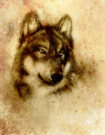 Wolf painting, old paper background and sepia effect.