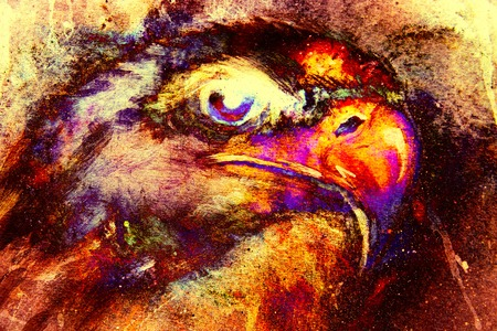 Eagle on abstract color background. Profile portratit. Fire effect. Stock Photo