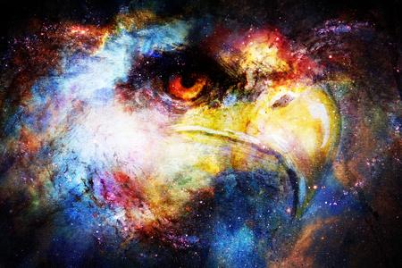 宇宙空間にイーグル ヘッド。動物の概念。横顔の肖像画。