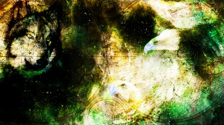 Eagle with wolf and old map in cosmic space. Profile portratit. Computer collage. Stock Photo