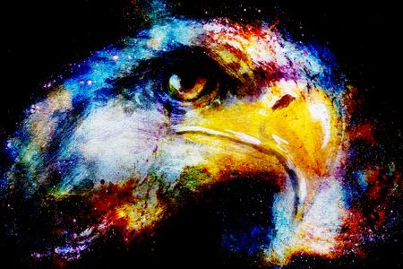 Eagle on abstract color background. Profile portratit.