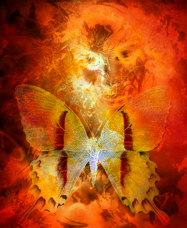 Goddess Woman and butterfly. CFire effect and ornaments. Stock Photo - 84891480