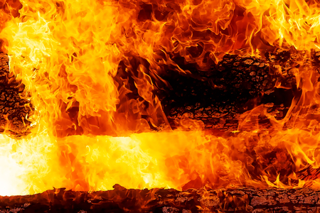 fascinating graphic detail of burning fire consuming wooden logs.