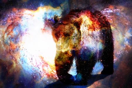 Kraftvoller Bär im Raum . Fotos und Grafik Wirkung . Computercollage Standard-Bild - 86202257