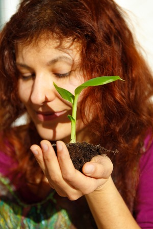 woman hand and plant. enviroment concept. Blur background.