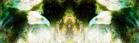 Eagle in cosmic space. Profile portratit. Computer collage.