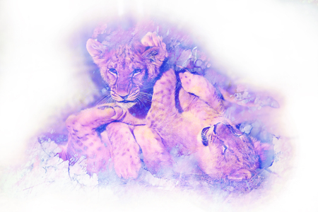 Two cute lion cubs playing together, graphic and marble effect. Stock Photo