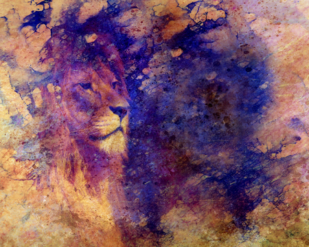 Lion face and graphic effect. Computer collage. Copay space.