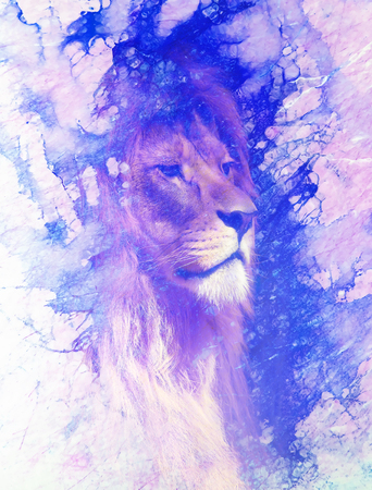 Lion face and graphic effect. Computer collage. Marble effect.