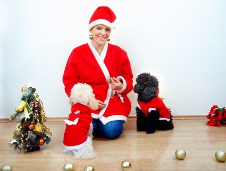 Cheerful young woman in christmas outfit accompanied by two sweet poodles. Stock Photo