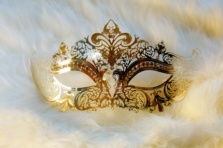 beautiful decorative venice style mask with filigrane linear ornaments on fur background.