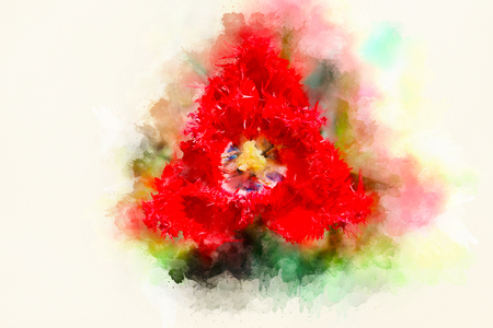 abstract ornamental collage with tulip flower motive. Reklamní fotografie - 119010463