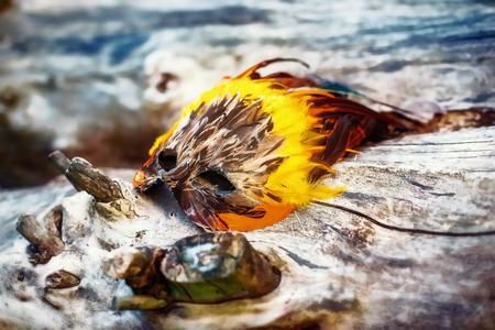 shamanic feather mask lying on a piece of wood. Stock Photo