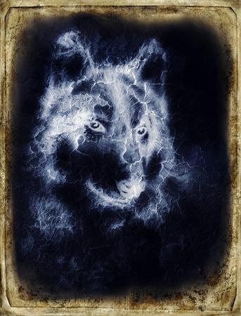 Illustration Portrait of a Wolf, crackle background. vintage picture.