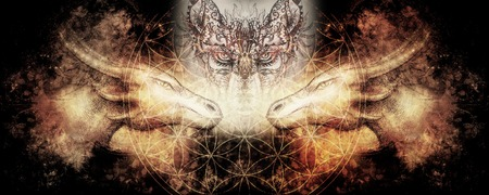 Cosmic dragons in space, cosmic abstract background and flower of life with ornamental wolf. Stock fotó