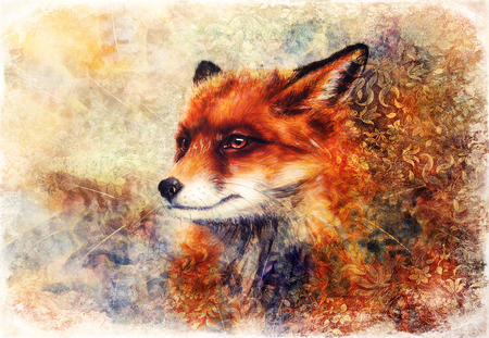 Painting of wild fox on paper. Ornamental background in border. Banque d'images - 122718909