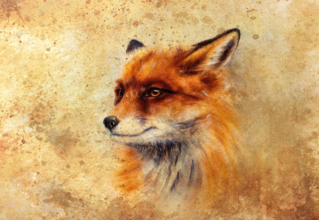 Painting of wild fox on paper. Aquarelle background. Banque d'images - 122719281