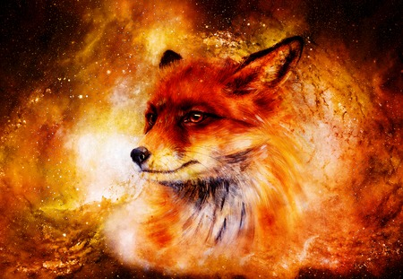 Painting of wild fox on paper. in cosmic space. Banque d'images - 122719487