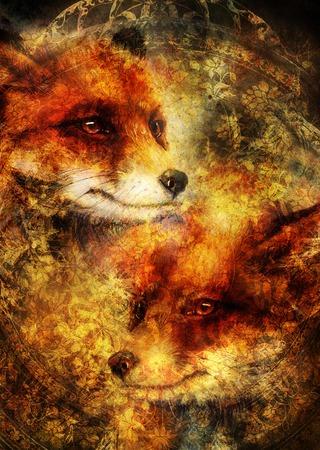 Painting of wild red fox. Ornamental background. Stok Fotoğraf