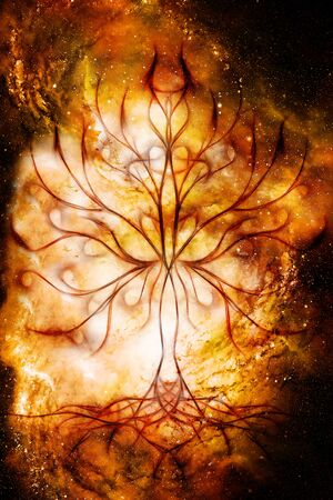 tree of life symbol on structured and space background, flower of life pattern, yggdrasil 写真素材