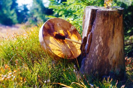 shamanic drum in nature, shamanic drum made of deer goat