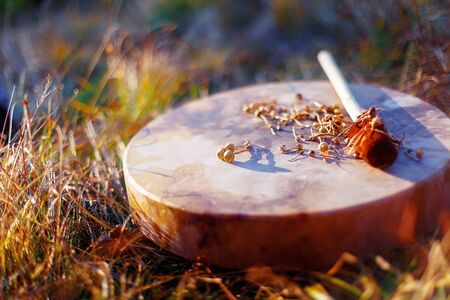 shamanic drum in nature, shamanic drum with magic mushrooms Stock Photo