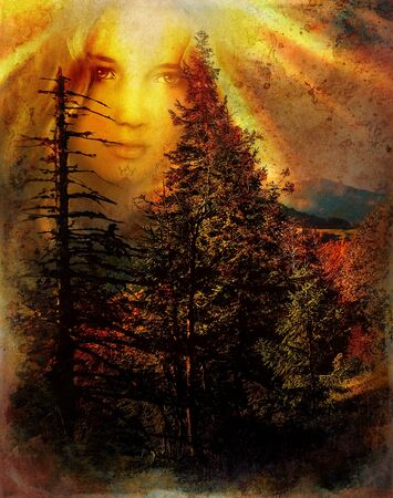 mystical forest fairy guardian above a woodland landscape