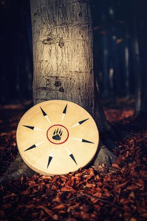 shamanic drum in nature, shamanic drum made of deer goat. Banque d'images