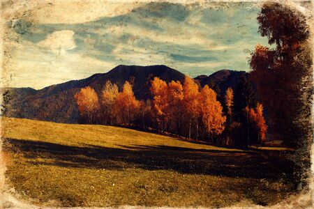 Beautiful landscape. birch tree in the foreground image, old photo effect.