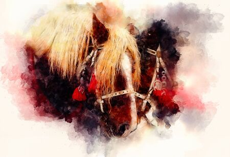 Two horse portrait close up in love on abstract structured space background 스톡 콘텐츠
